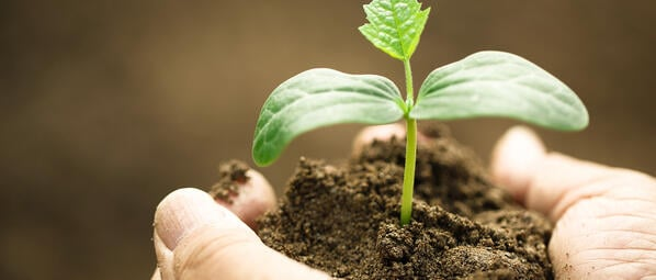Using Lead Nurturing to Support the Buyer Journey