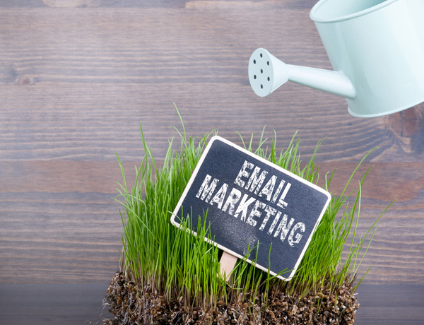 Building and Maintaining your Email List