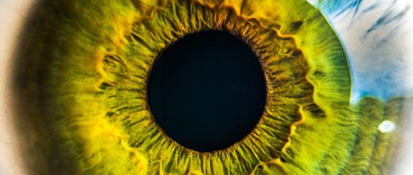 banner-eye