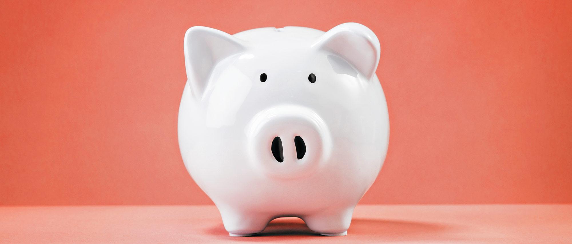 banner-piggy-bank